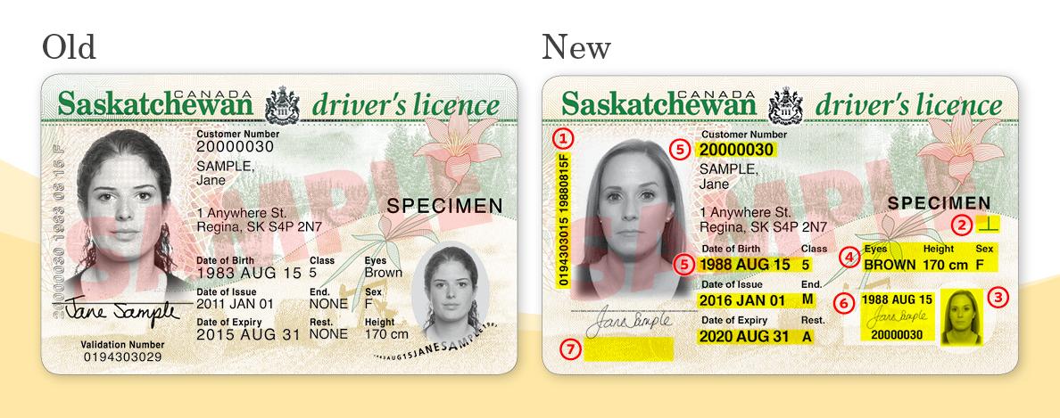 Saskatchewan rolling out enhanced drivers' licences ...